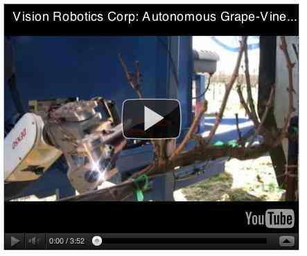Image to go with video of: The Autonomous Grape-Vine Pruner