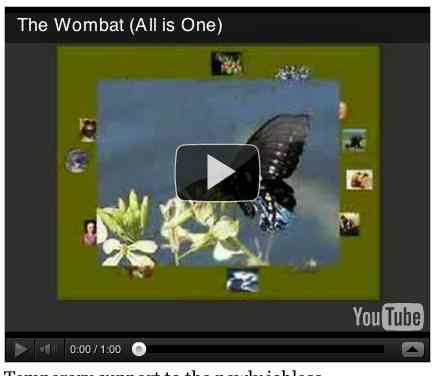 Image to go with video of: The Wombat (All is One)