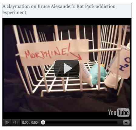 Image to go with video of: A claymation on Bruce Alexander's Rat Park addiction experiment